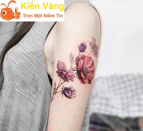 Hoa hồng đỏ cạnh bắp tay